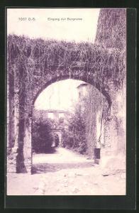 AK Tost, Eingang zur Burgruine