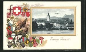 Passepartout-Lithographie Olten, Wappen und Gemse