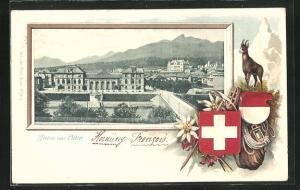 Passepartout-Lithographie Olten, Teilansicht des Ortes, Wappen und Gemse