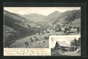 AK Wattwil, Pension Säntisblick, Ortsansicht