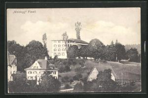AK Flawil, Teilansicht mit Hotel Weidegg