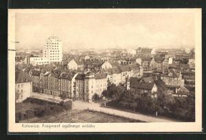 AK Katowice, Fragment ogolnego widouku