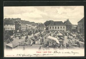 AK Odense, I gamle Dage