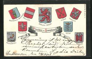 Präge-AK Luxembourg, Wappen von Neufchateau, Marche und Chiny