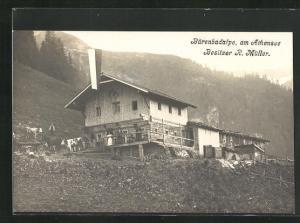 AK Bärenbadalpe am Achensee, Ortsansicht mit Kühen