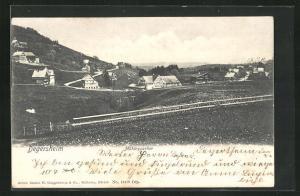 AK Degersheim, Blick auf das Mühlequartier