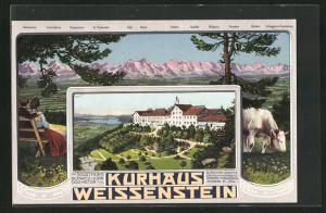 AK Weissenstein, Kurhaus Weissenstein, Alpenpanorama