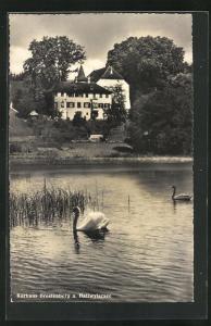 AK Seengen / Hallwylersee, Kurhaus Brestenberg