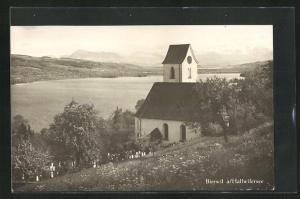 AK Birrwil a. Hallwilersee, Ortsansicht mit Kirche am Ufer