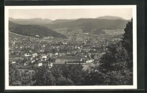 AK Liestal, Ortsansicht mit Blick ins Land