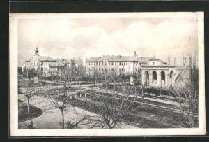 AK Novi Sad, Drzavna Bolnica