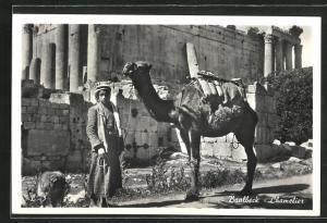 AK Baalbec, Cameleer, Anwohner mit Kamel vor einer Ruine