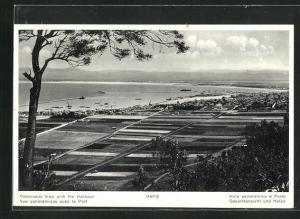 AK Haifa, Vue panoramique avec le Port