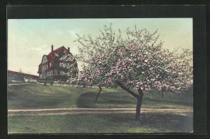 AK Goslar-Steinberg, Hotel Haus Bruer, Am Schieferwege