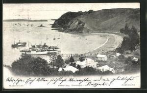 AK Auckland, Home Bay, Motutpu