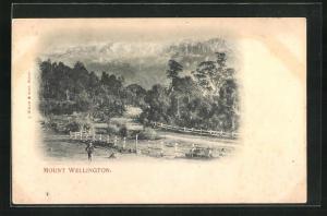 AK Hobart, Blick auf den Mount Wellington