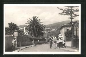 AK Madeira-Funchal, Ortsansicht