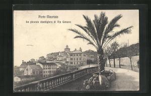 AK Porto Maurizio, La phoenix dactilyfera di Via Genova