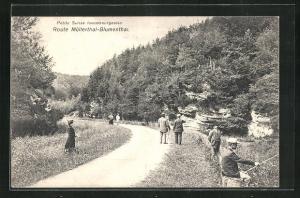 AK Müllerthal, Spaziergänger auf der Strasse nach Blumenthal