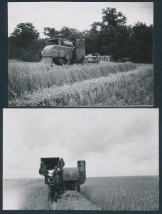2 Fotografien Mähdrescher Massey-Harris, Landwirt mit Landmaschine bei Noiron-sous-Gevrey 1953 /54
