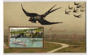 AK Evian les Bains, Salondampfer auf dem Genfersees, ziehende Schwalben
