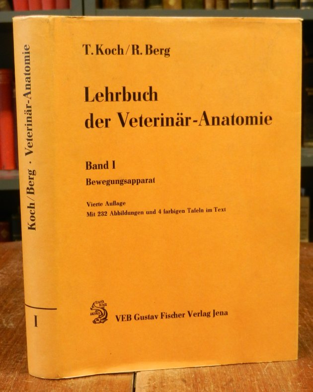 Charmant Artikel über Die Anatomie Fotos - Menschliche Anatomie ...