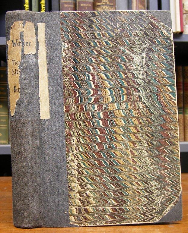 Waller, Augustus Desire: Tierische Elektrizität. Vorlesungen. Mit 68 Figuren im Text. übersetzt von Estelle du Bois-Reymond.