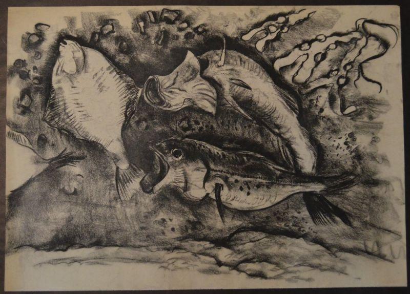 Kuhfuss, Paul: Fische. Kohle auf Papier, 46 x 64 cm, wie meist bei Zeichnungen von Kuhfuss nicht signiert.