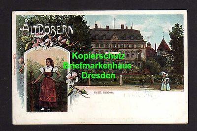 Ansichtskarte Altdöbern Gräfl. Schloss 1906 Frau in Tracht