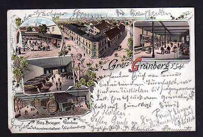 Ansichtskarte Grünberg Schlesien Litho 1902 Restaurant Weinhandlung Schaumweinkeller