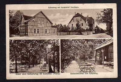Ansichtskarte Gasthaus Eckertal Eckerkrug Kuranstalt Jungborn 1924 Bahnpost