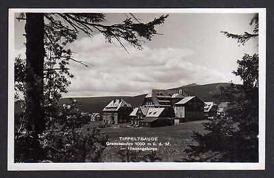 Ansichtskarte Riesengebirge Tippeltbaude Grenzbauden um 1935 Fotokarte