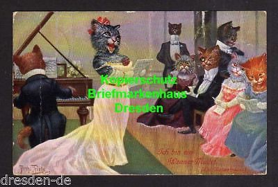 Ansichtskarte Künstlerkarte Arthur Thiele Katzen vermenschlicht Katze als Opernsänge
