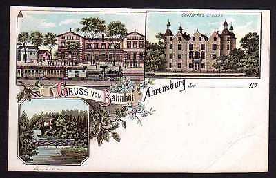 Ansichtskarte Ahrensburg Litho Gruss vom Bahnhof Gräfl. Schloss  um 1900