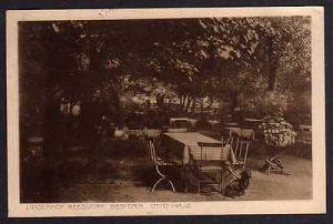 Ansichtskarte Reesdorf Fläming Gasthaus Lindenhof 1914 Magdeburgerforth Möckern
