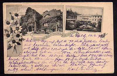 Ansichtskarte Schweissjäger Eichwald bei Dubi Teplitz 1898