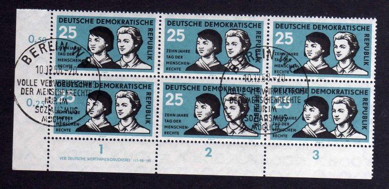DDR 670 Menschenrechte 1958 DV gestempelt SST ungefalten nicht angetrennt Zä