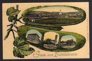 Ansichtskarte Bratelsbrunn 1908 Schule Kirche Handlung Pfarrhof
