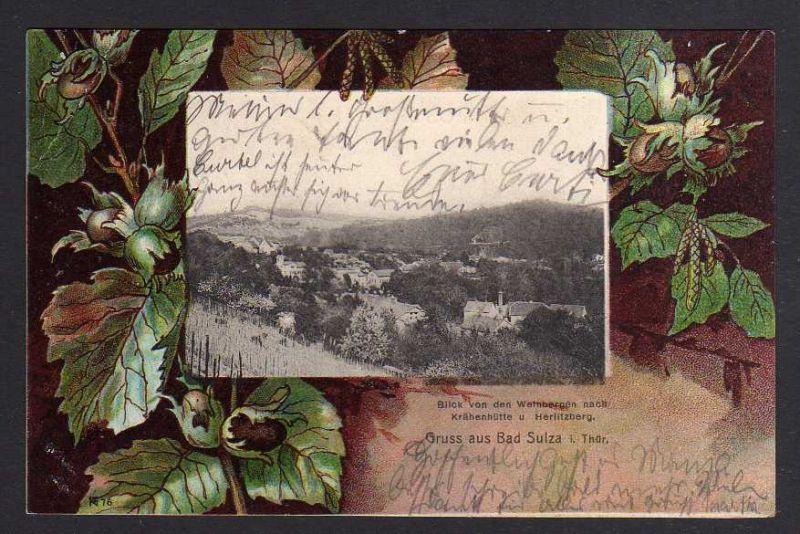 Ansichtskarte Bad Sulza Stadtsulza 1903 Krähenhütte Herlitzberg