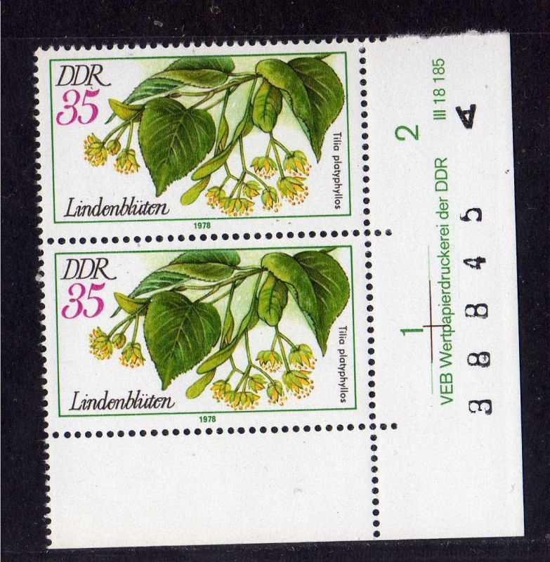 DDR 1977 2291 DV ** Arzneipflanzen Linde