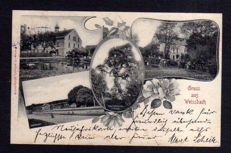 Ansichtskarte Weißbach bei Pulsnitz 1902 Bahnhof Rittergut Gasthof Galgentanne Föhre