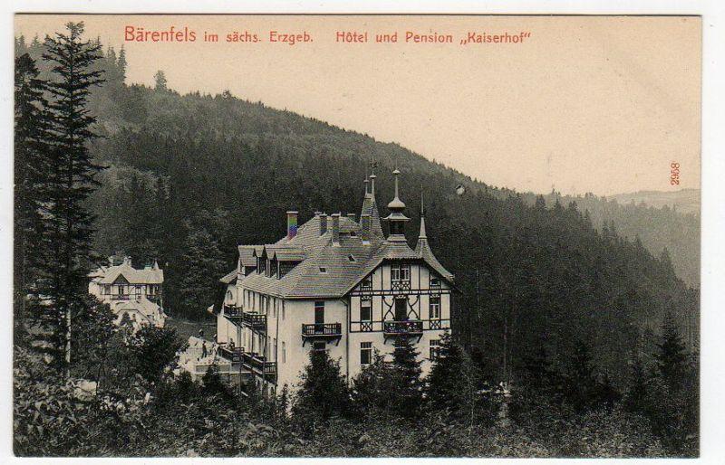 Ansichtskarte Bärenfels Erzgebirge Hotel  Pension Kaiserhof