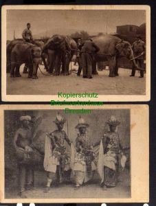 2 Ansichtskarte Circus Willy Hagenbeck Gross Raubtierschau Elefanten Transport Ceylo