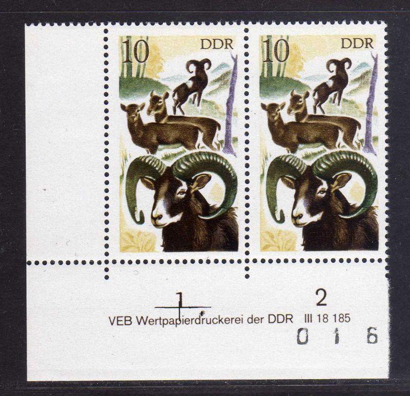 DDR 1977 2270 DV ** Jagdwesen Mufflon