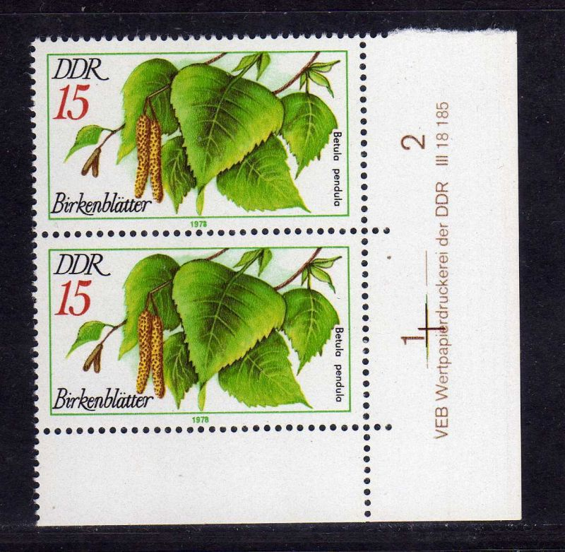 DDR 1977 2288 DV ** Arzneipflanzen