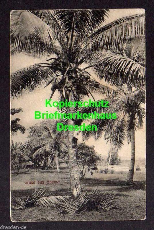 Ansichtskarte Apia Samoa 1910 Verlag Tattersall Kokospalmen 5 Pfennig Germania aus M