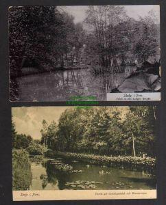 2 Ansichtskarte Stolp i. Pom. 1906 Teich in den Langen Bergen Goldfischteich