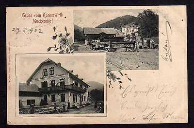 Ansichtskarte Muckendorf Niederösterreich Karnerwirt Gasthaus Hainthaler 1902