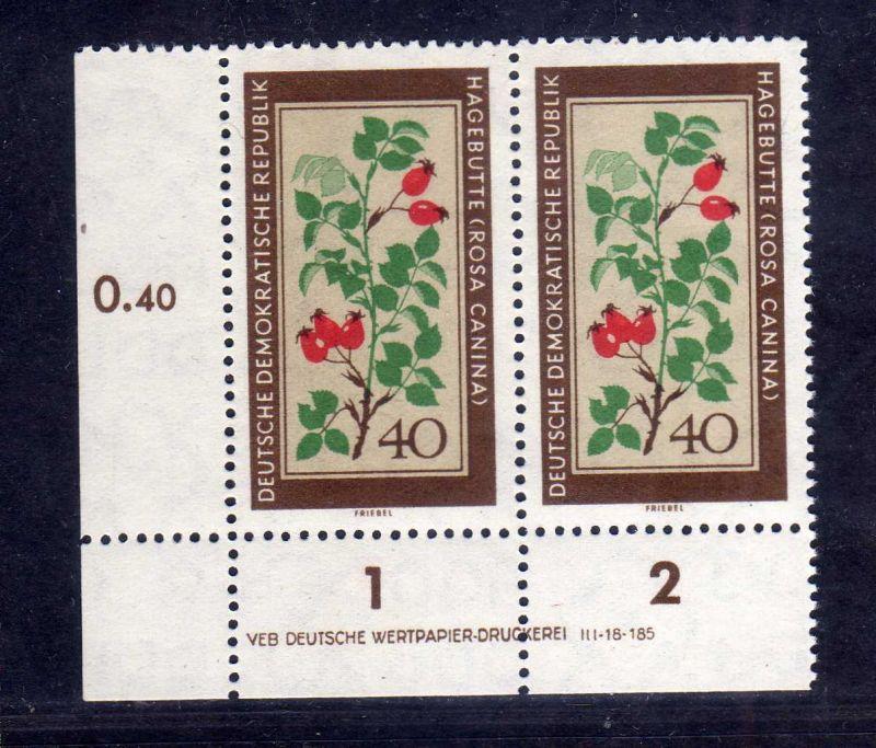 DDR 1960 761 DV Druckvermerk ** Heckenrose  Heilpflanzen