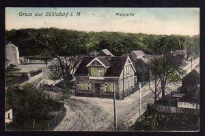 Ansichtskarte Zühlsdorf Materialwarenhandlung Opitz Waldpartie 1913 Basdorf